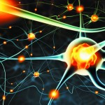 Fighting chronic fatigue with neurotransmitters and hormones