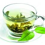 Green tea extract and diabesity