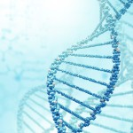 Epigenetics: a new link between nutrition and cancer