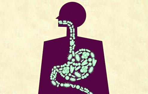 Are prebiotics or probiotics effective against dermatitis?