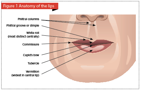 Lip rejuvenation | PRIME Journal