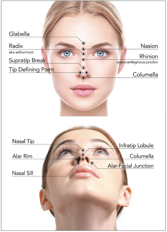 A review of non-surgical rhinoplasty | PRIME Journal